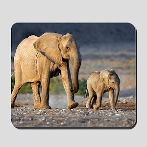 Desert-adapted elephants Mousepad
