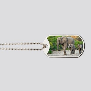 Desert-adapted elephants Dog Tags