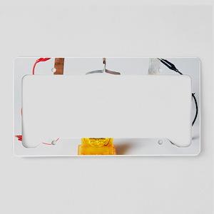 Fruit-powered clock License Plate Holder