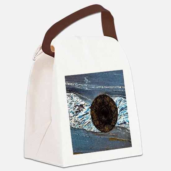 Deformation structure in schist Canvas Lunch Bag