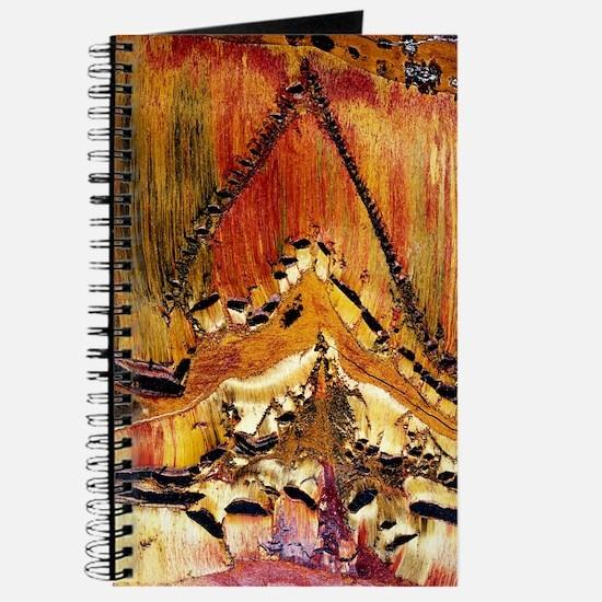 Deformation in tiger ironstone Journal