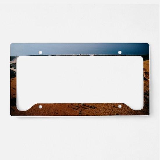 Deforestation, Madagascar License Plate Holder