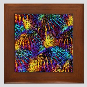 Fish scales, light micrograph Framed Tile