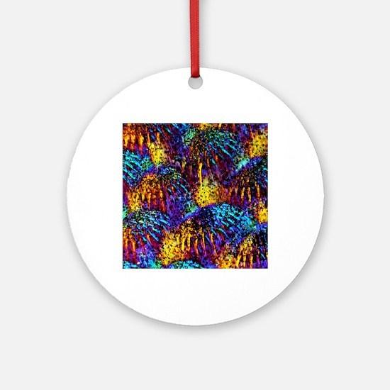 Fish scales, light micrograph Round Ornament