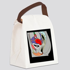 Female genitourinary system, artw Canvas Lunch Bag