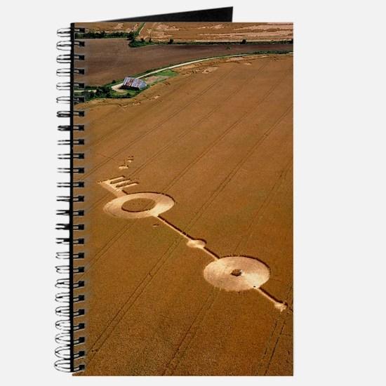 Crop formation, near East Kennett, Wiltshi Journal