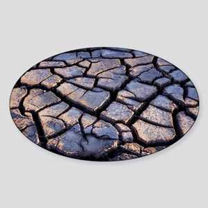 Cracked earth Sticker (Oval)