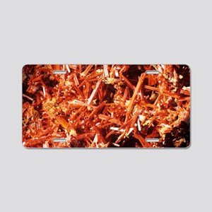 Crocoite mineral crystals Aluminum License Plate