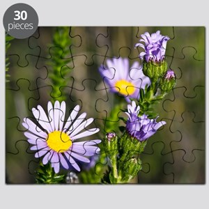 Felicia (Felicia echinata) flowers Puzzle