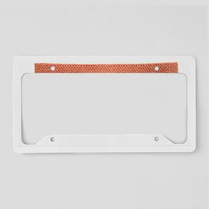 Fabric plaster License Plate Holder