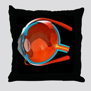 Eye anatomy Throw Pillow