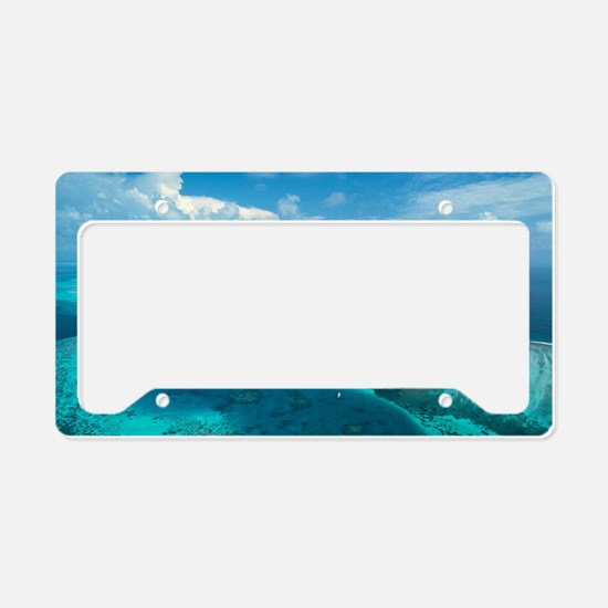 Coral islands License Plate Holder