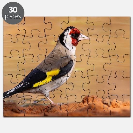 European Goldfinch Puzzle