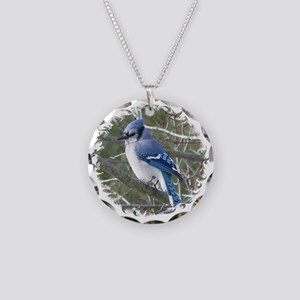 White chested Bluejay Necklace