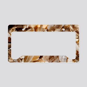 Coastal shell fragments License Plate Holder