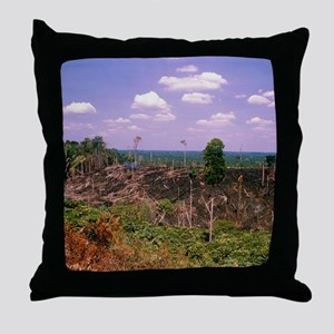 Colonisation of the Amazonian rainfor Throw Pillow