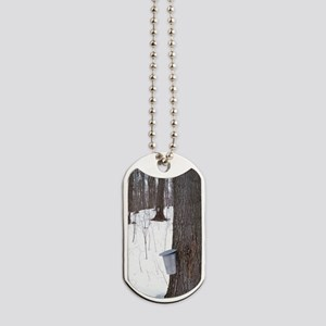 Collecting maple tree sap Dog Tags