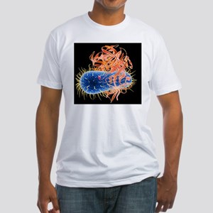 E. coli EHEC bacteria, computer art Fitted T-Shirt