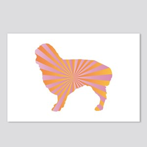Spaniel Rays Postcards (Package of 8)