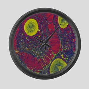 Cytoskeleton, SEM Large Wall Clock