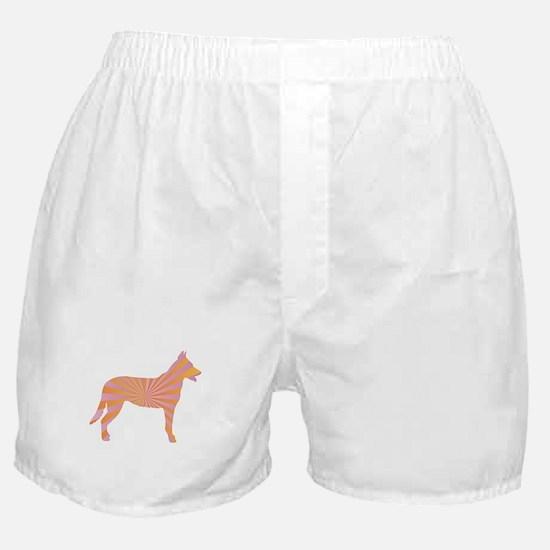 Beauceron Rays Boxer Shorts