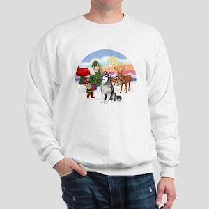 Treat for an Alaskan Malamute Sweatshirt