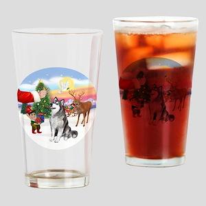 Treat for an Alaskan Malamute Drinking Glass
