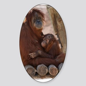 (16) Orang Mother and Child 7374 Sticker (Oval)