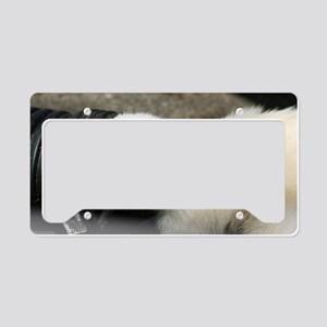 Digger Pillow Case License Plate Holder