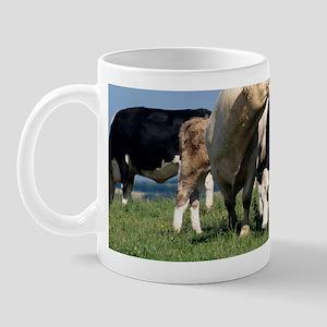 Bull with cows Mug