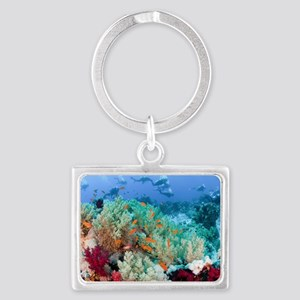 Coral Reef Red Sea, Ras Mohamme Landscape Keychain
