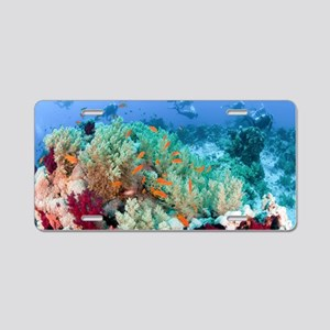 Coral Reef Red Sea, Ras Moh Aluminum License Plate