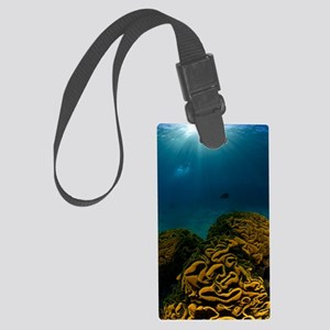 Coral reef, Red Sea Large Luggage Tag