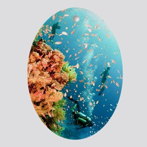 Coral Reef Red Sea, Ras Mohammed Oval Ornament