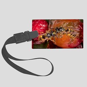 Common Wasps feeding on fruit Large Luggage Tag
