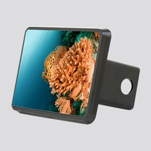 Coral Reef Rectangular Hitch Cover