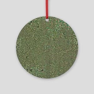 Birmingham, UK, aerial image Round Ornament