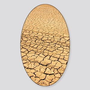 Baked earth at bottom of watercours Sticker (Oval)