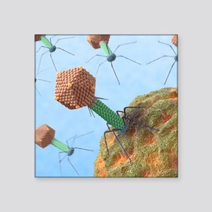 """Bacteriophages attacking ba Square Sticker 3"""" x 3"""""""