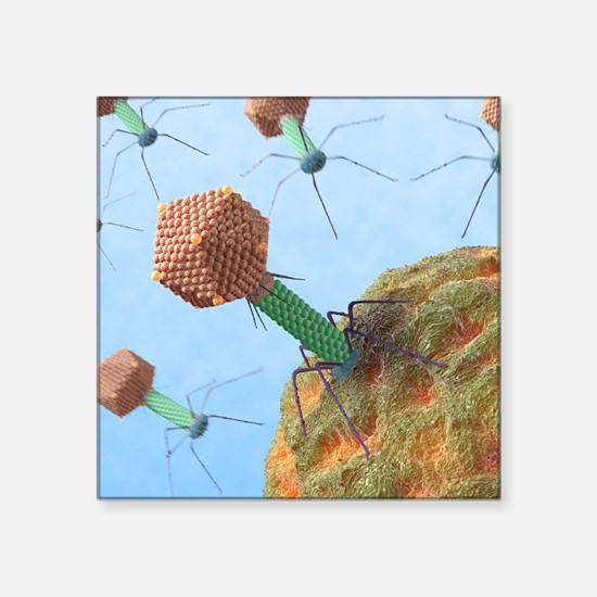 "Bacteriophages attacking ba Square Sticker 3"" x 3"""