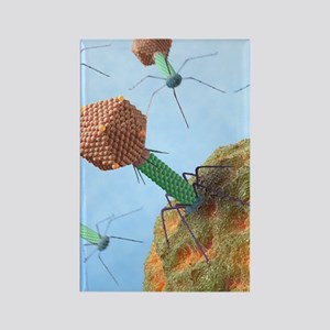 Bacteriophages attacking bacteria Rectangle Magnet