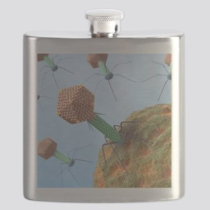 Bacteriophages attacking bacteria Flask