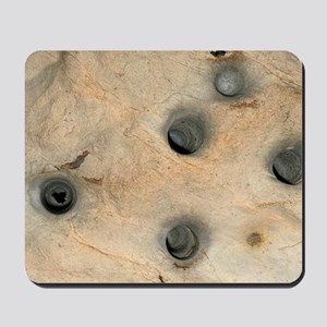 Bat cave roosting holes Mousepad