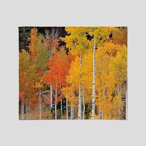 Autumn Aspen trees Throw Blanket