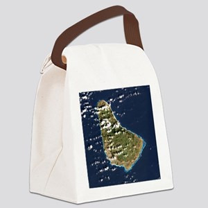 Barbados, satellite image Canvas Lunch Bag