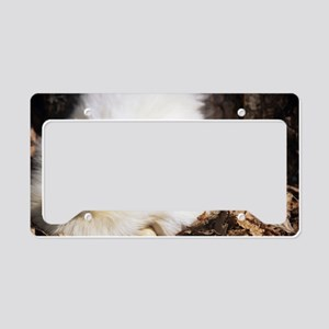 Bantam chicken and egg License Plate Holder