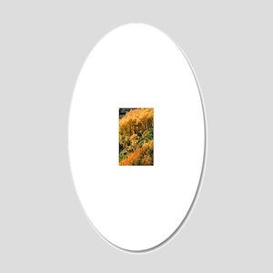 Autumn aspen trees 20x12 Oval Wall Decal