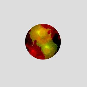 Cell structure, fluorescent micrograph Mini Button