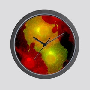 Cell structure, fluorescent micrograph Wall Clock