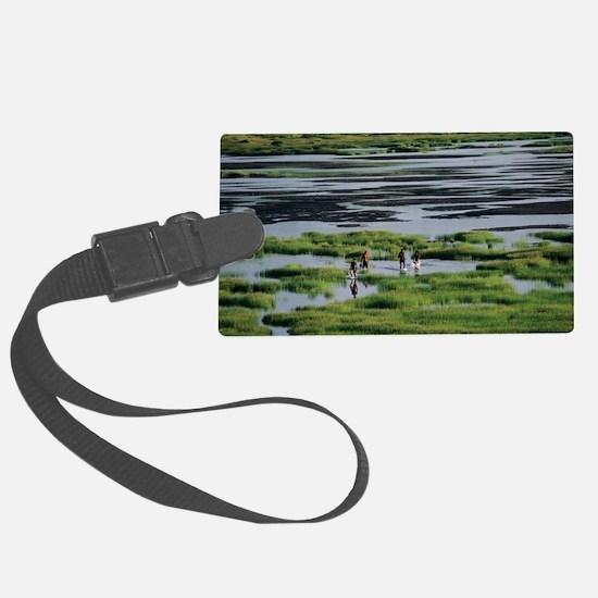 Asphalt lake Luggage Tag